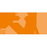 lfv-logo